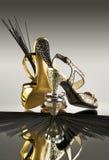 Gold- und Silberschuhe lizenzfreie stockfotografie