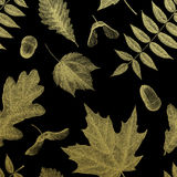 Gold vintage engraving of autumn leaves Royalty Free Stock Images