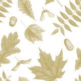 Gold vintage engraving of autumn leaves Stock Image