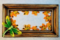 Gold vintage frame, maple leaves, dragonfly. royalty free stock image