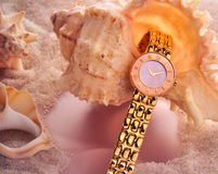 Gold watch with sea shells Royalty Free Stock Images