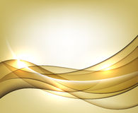 Gold wavy vector Template Abstract background with transparent curves lines. Stock Images