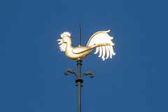 Gold weather vane in sunlight Stock Images