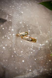 Gold wedding rings. On the tulle Stock Photos