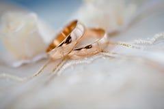 Gold wedding rings Stock Photo