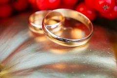 Gold wedding rings in autumn scenery Royalty Free Stock Images