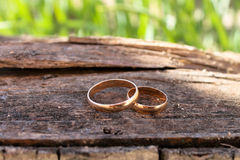 Gold wedding rings. Gold rings on the background of wood and grass Royalty Free Stock Images