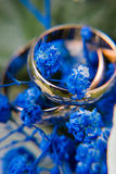 Gold wedding rings on blue flowers Royalty Free Stock Images