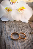 Gold wedding rings on a bouquet of white orchids Royalty Free Stock Photos