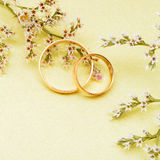 Gold wedding rings and branch flowers Stock Photos