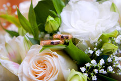 Gold wedding rings on colors Royalty Free Stock Photo
