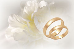 Gold wedding rings on flowery festive background Royalty Free Stock Image