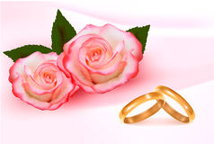 Gold wedding rings in front of three pink roses Stock Images