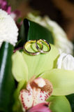 Gold wedding rings on on leaf of orchids Stock Photo