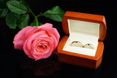 Gold wedding rings for newlyweds on a black background royalty free stock images