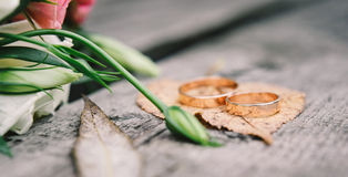 Gold wedding rings on orange, autumn leave Stock Photography