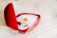 Gold wedding rings on a red box. And white background royalty free stock image