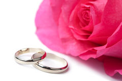 Gold wedding rings and rose isolated Royalty Free Stock Photo