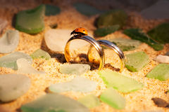 Gold wedding rings in the sand and ladybug.  Royalty Free Stock Photography