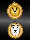 Gold and white lions Stock Photography