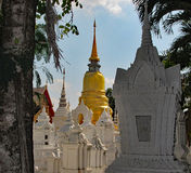 Gold & Whites Chedis at Wat Suan Dok. Gold Chedi behind White Pagodas, framed by trees and palms at Wat Suan Dok in Chiang MAi, Thailand royalty free stock photography