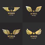 Gold wings logo vector set. Vintage hipster design. Part four. Stock Photography
