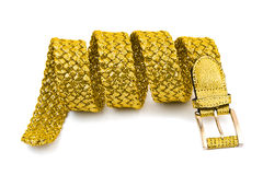 Gold woman belt Royalty Free Stock Photography