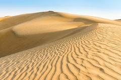 Gold yellow dunes under blue sky Royalty Free Stock Image