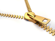Gold zipper Stock Images