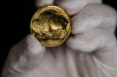 Goldbüffel Vereinigter Staaten Hand Stockfoto