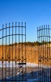 Goldbinsenrückseite von den offenen Schmiedeeisentoren lizenzfreies stockfoto