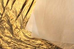 Goldblätter Lizenzfreie Stockfotos