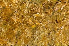 Goldblatt Stockbild