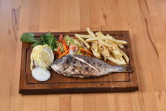 Goldbrassen/Cupra-Fische Stockbild