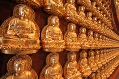 Goldbuddha-Statuesteuerknüppel auf der Wand Stockbilder