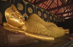 GoldBudha Stock Afbeeldingen