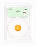 Golddollar-Münze in geordnetem Kasten Lizenzfreies Stockfoto