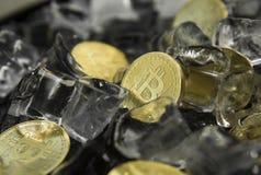 Golded bitcoins στο υπόβαθρο πάγου Η έννοια της ανταλλαγής το χειμώνα πάγωμα Μεταλλεία Blockchain Ψηφιακά χρήματα και στοκ εικόνες με δικαίωμα ελεύθερης χρήσης