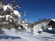 Goldegg, Αυστρία το χειμώνα Στοκ Φωτογραφία