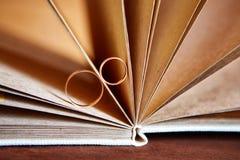 Goldeheringe in einem Buch eigenhändig gemacht von den natürlichen Materialien Lizenzfreies Stockbild