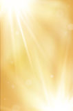 Golden abstract background with shiny rays Stock Photos
