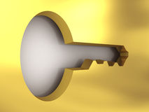 A golden access key. 3D image Stock Photography