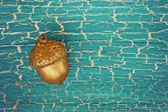 Golden acorn on old plank Royalty Free Stock Photos
