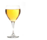 Golden Ale or Champagne Alcohol in Wine Glass Stock Photography