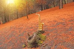 Golden Alto Saxophone in the Forest at the Foot of Mount Etna. T royalty free stock photos
