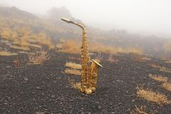 Golden Alto Saxophone Lies on the Black Background. Romantic and royalty free stock images