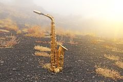 Golden Alto Saxophone Lies on the Black Background. Romantic and royalty free stock photos