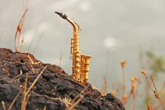 The golden alto saxophone stands on the background of the beach. stock photos
