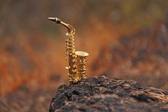 The golden alto saxophone stands on a black stone. Romantic musical background. Musical cover and creative. Design with copy space stock photos