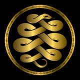 Golden Anaconda snake medallion. Vector illustration of anaconda in gold royalty free illustration